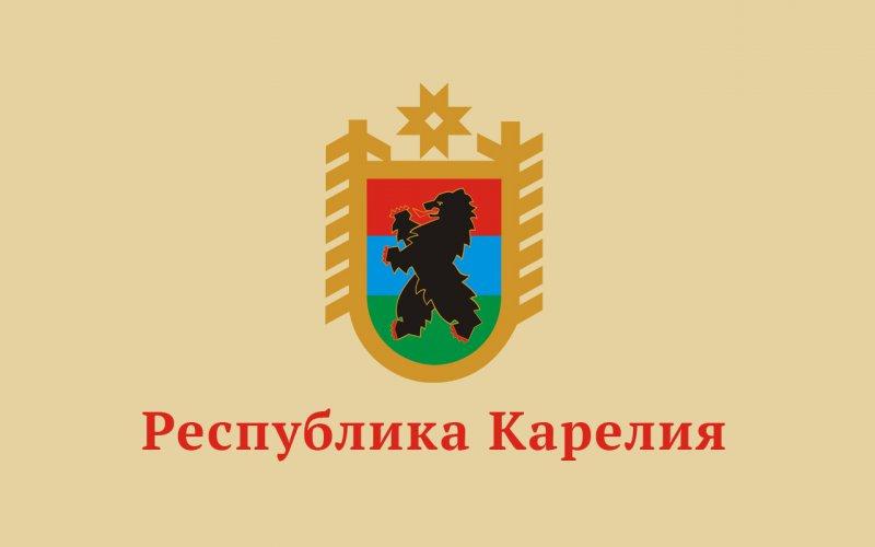 Энергетическое обследование и программы повышения энергоэффективности компаний Республики Карелия