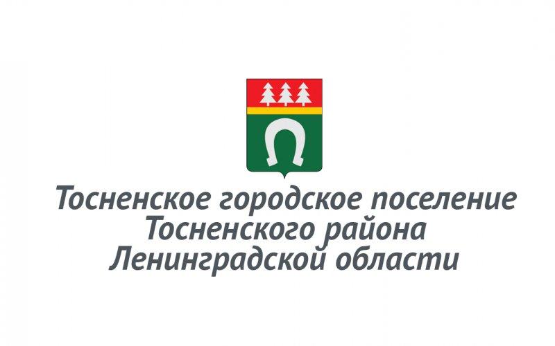 Программа энергосбережения и повышения энергетической эффективности Тосненского городского поселения